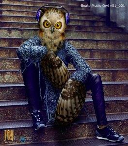 Beats Music- Owl concept
