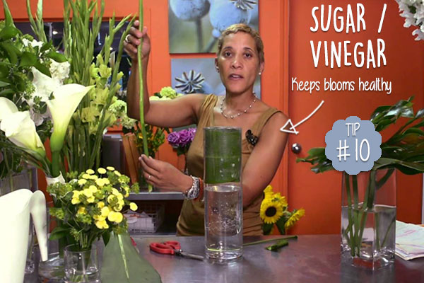 Keep-Cut-Flowers-Fresh-For-Longer-with-Apple-Cider-Vinegar-and-Sugar