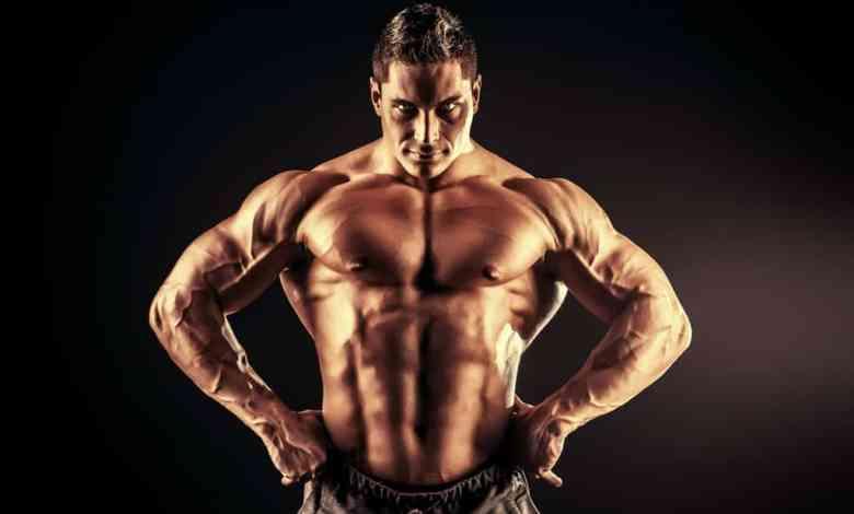بناء العضلات للجسم النحيف