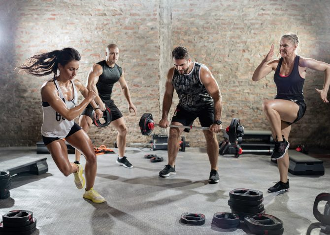 definitie fitness