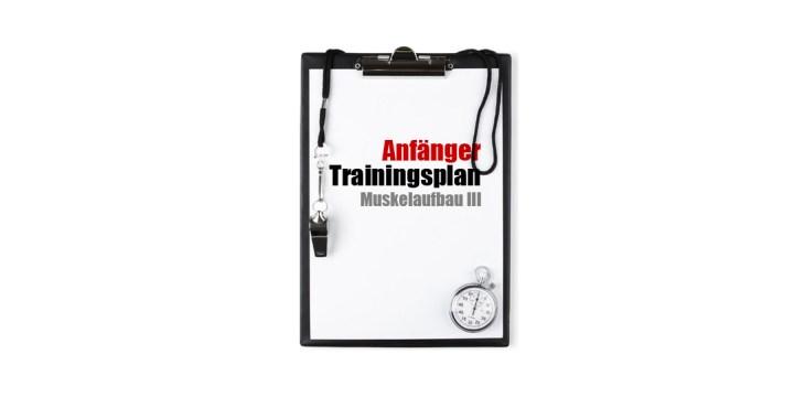 Anfänger Trainingsplan Muskelaufbau 3