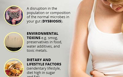 INFOGRAPHIC: Causes of Chronic Inflammation   BodyFitSuperstore.com