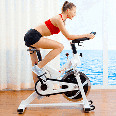 Sunny Health & Fitness Sf-b1110
