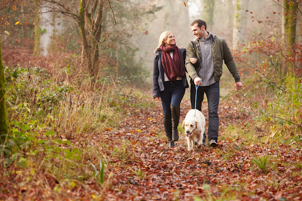 Take a walk in the woods: Better Mental Health Through Exercise
