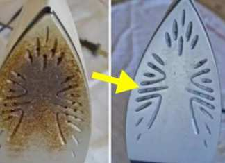 How-to-clean-an-iron