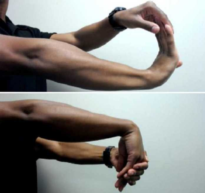 8 Exercises to Strengthen Your Hands