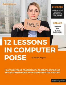 12 Lessons in Computer Poise E-Book