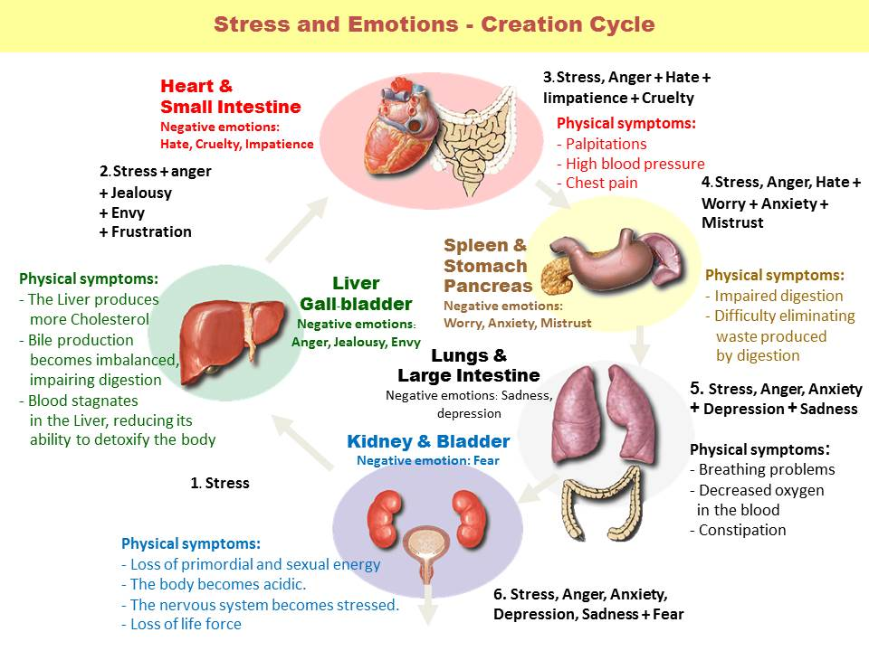 5-Element-Stress-and-Emotion-Cycle