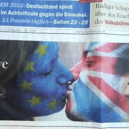 Facepainting Brexit Flagge