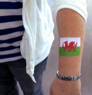 Fanschminken Fußball Flaggen Bodypainting