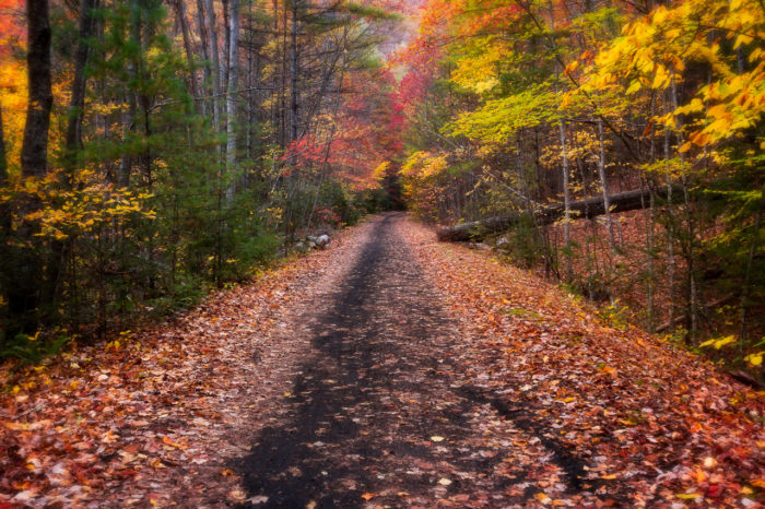 A section of the Virginia Creeper Trail is draped in the colors of autumn