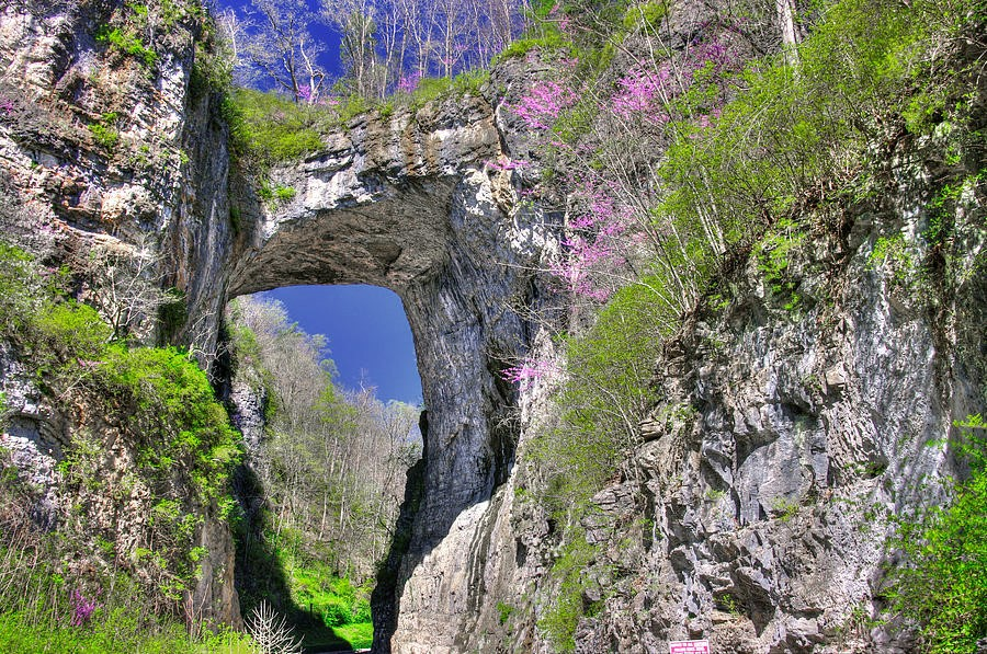 Nearby Natural Bridge is available for an offsite excursion
