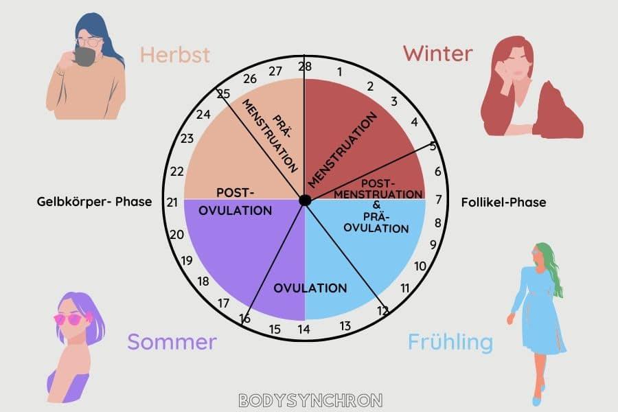 Das Bodysynchron-Prinzip: Dein Hormonzyklus entspricht genau den vier Jahreszeiten.
