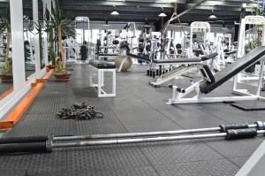 Lots of Functional items, free weights and space to use them.