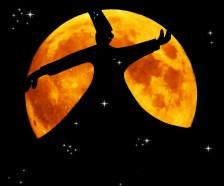 Silhouet van een derwisj tegen de achtergrond van een volle maan. In het silhouet zijn sterren te zien.