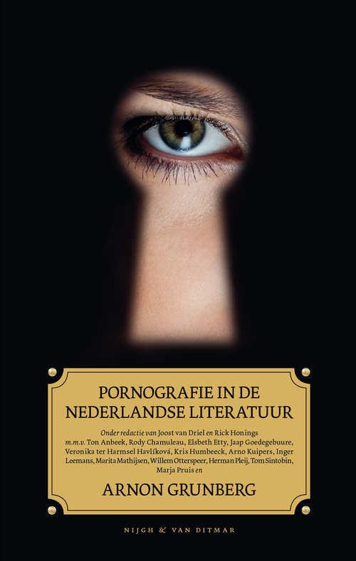 Pornografie in de Nederlandse literatuur