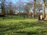 buurt-dikketruiendag-wandeling-2016-02-16 (38)