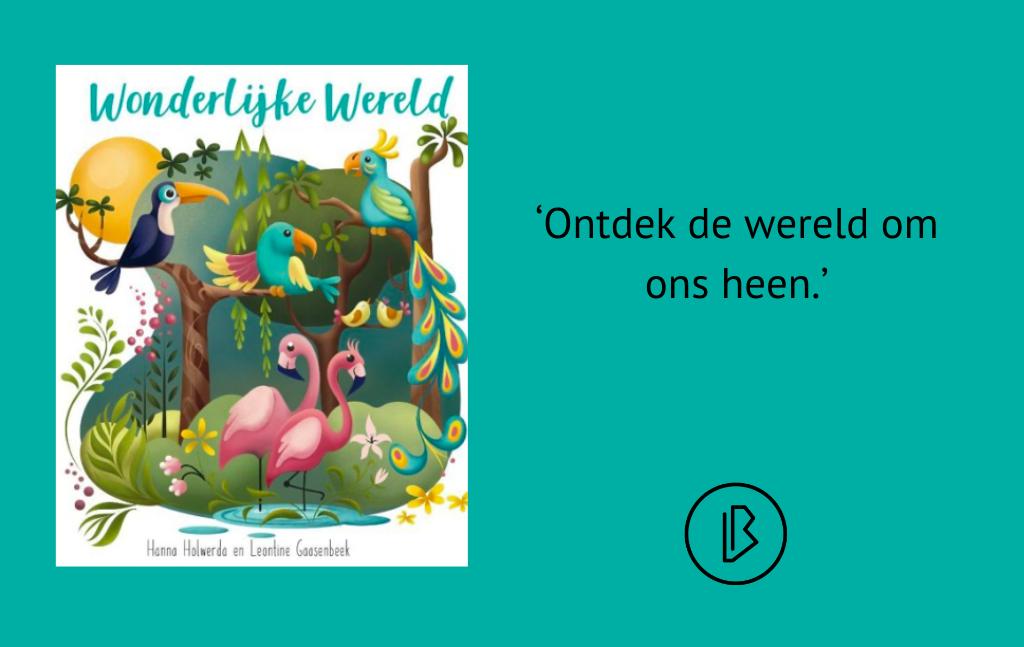 Recensie: Hanna Holwerda – Wonderlijke wereld