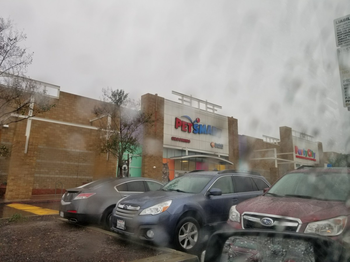 View of PetSmart's store front as seen through a rain soaked window