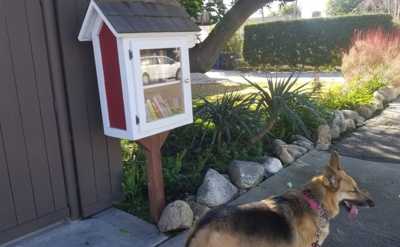 German shepherd in front of a small two shelf white and red little free library