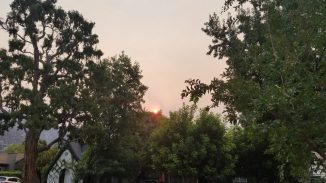 An oddly orangish sun peeks out over the trees