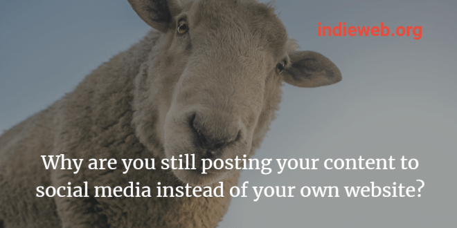 "a sheep's head looks condescendingly down at the viewer superimposed with the text ""Why are you posting your content to social media instead of your own website? indieweb.org"""