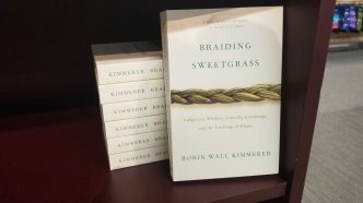 copy of Braiding Sweetgrass in paperback with a pile of six of them behind it
