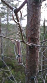 Silver whistle hanging from a tree branch in the forest