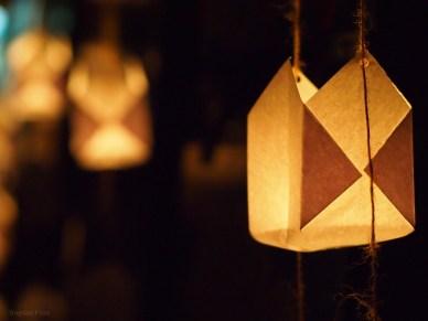 Festivalul Luminii Editia 10 2014 - Parcul Central Simion Barnutiu