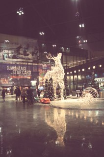 Cluj-Napoca City Decembrie 2014
