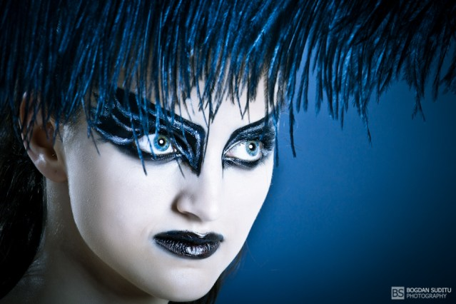 Black Swan - Feather