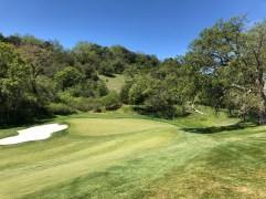 15th green as viewed from the cart path.