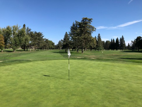 Middle - behind 1st green.