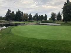 Side view of 14th green with 17th green in background.