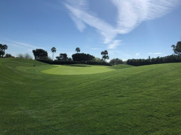 View of the 13th/14th green complex with a bunker in the middle.