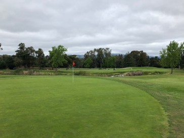 Side view of 16th green with 11th green in background.