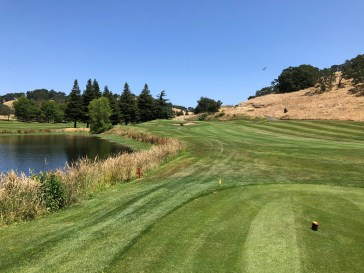 """The """"bonus"""" par-3 between 16 and 17. If you look closely, you will also see the black tees for the 15th green, which make it a massive 233-yard par-3 over two water hazards!"""