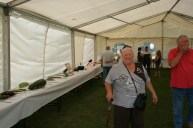 Town Show 2009_12