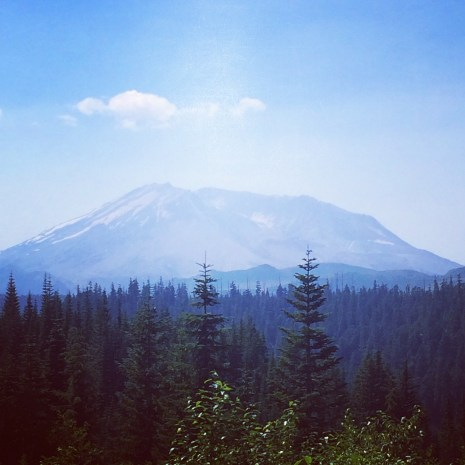 A view of Mt St Helens from the blast zone.