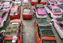 begini-jadinya-bila-taksi-di-thailand-disulap-jadi-kebun-sayuran.