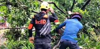 BPBD Bogor