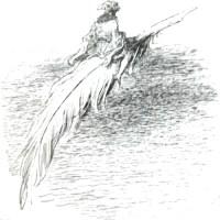 Anfragen zum Thema Material bzw. dessen Herkunft und Anleitungen