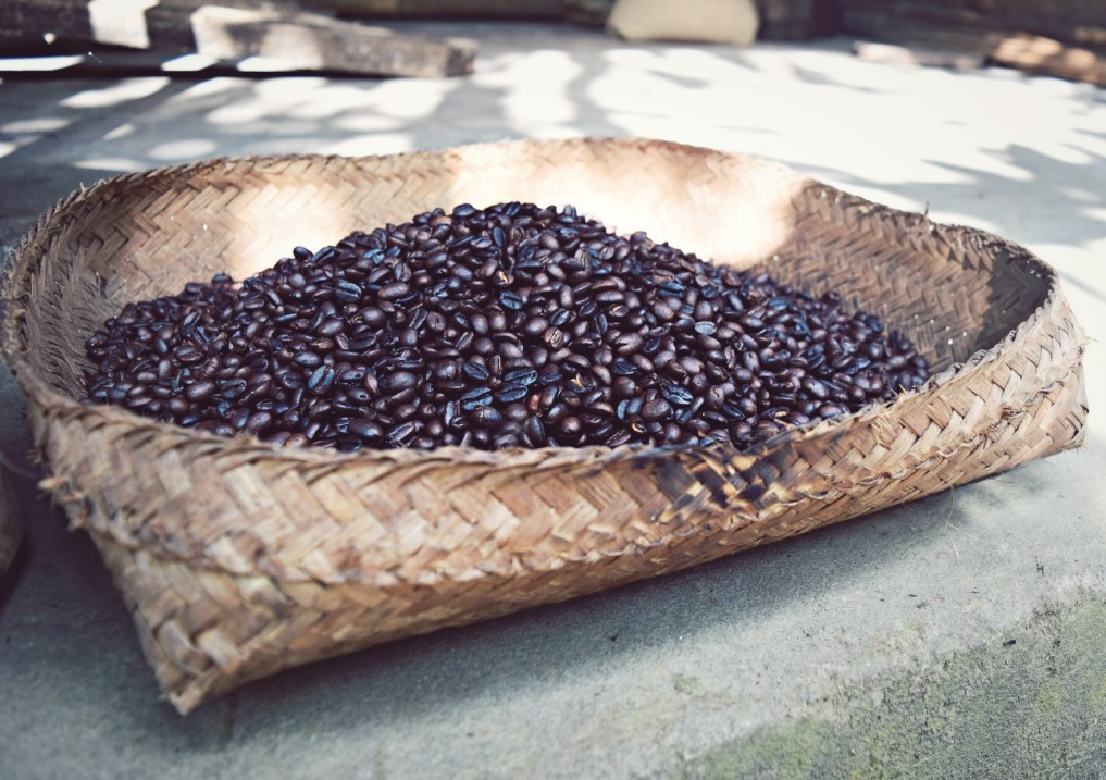 roasted coffee beans ubud bali