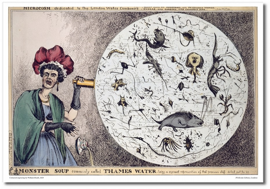 """L0006579 Engraving: 'Monster Soup..."""" by William Heath"""