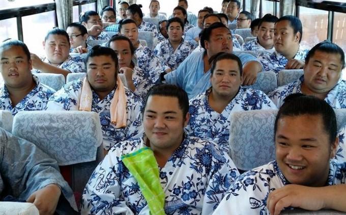 sumo-bus_2991959k