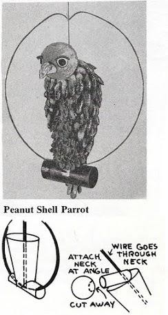 2. Peanut_Shell_Parrot