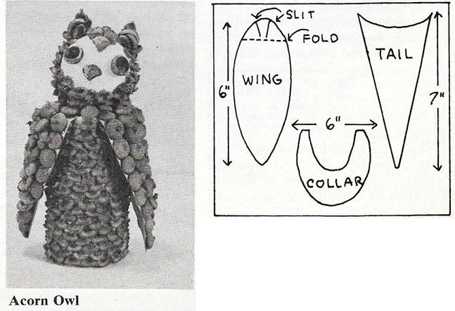 3. Acorn_Owl
