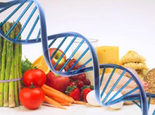 Food-DNA