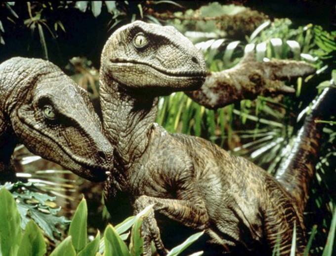 Velociraptors-680