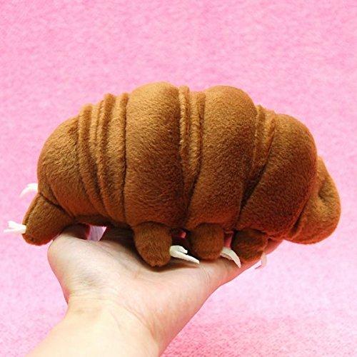 tardigrade-brown